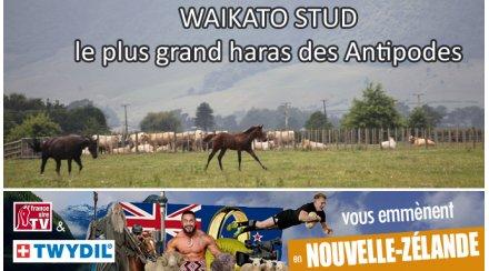 France sire tv. La datation.