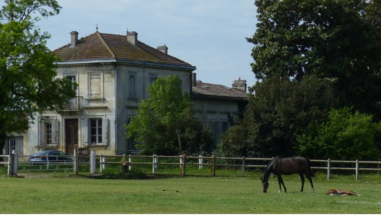 haras d'ayguemorte