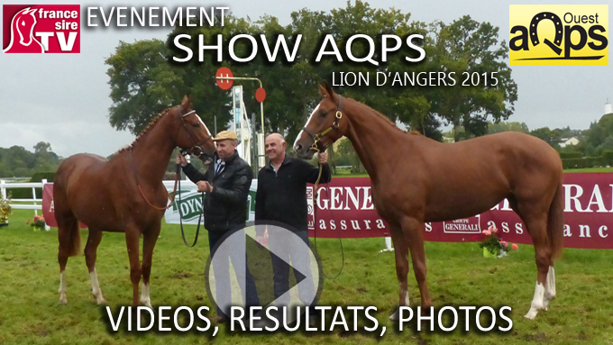Show aqps du lion 2015 les rsultats vidos et photos de la show aqps du lion 2015 les rsultats vidos et photos de la journe france sire fandeluxe Image collections
