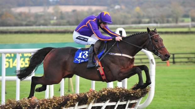 Saturnas, gagnant du Gr.1 Paddy Power Future Champions Novice Hurdle à Leopardstown