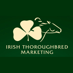 Irish Thoroughbred Marketing :